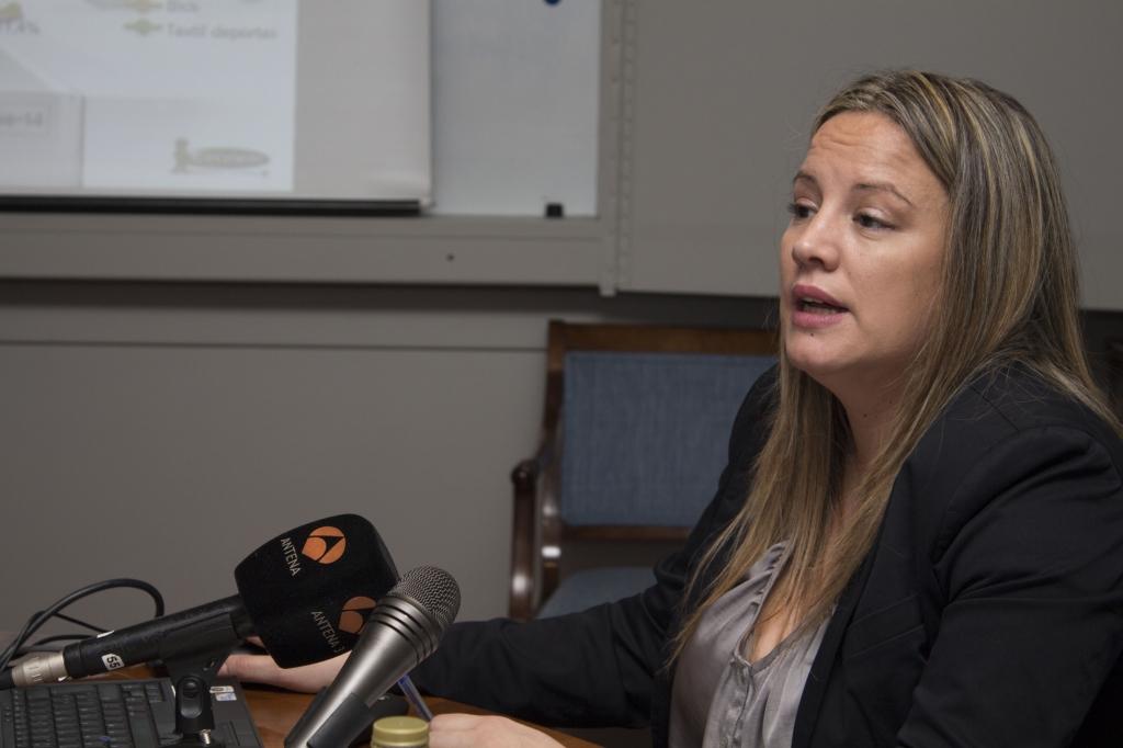 Liliana Marsán, responsable de El Observatorio Cetelem, en la presentación a los medios de los informes mensuales en 2014.