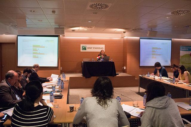 Liliana Marsán, responsable de El Observatorio Cetelem en la rueda de prensa de presentación del informe europeo en 2014.